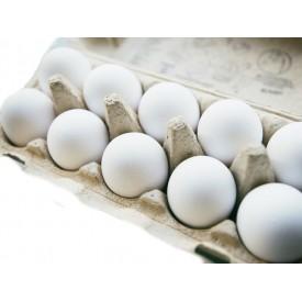 Jajka kury zielononóżki 10...