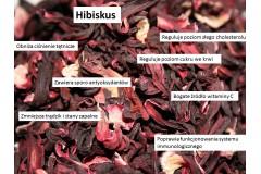 Hibiskus i jego właściwości